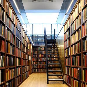 Библиотеки Чиколы